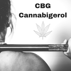 FEATUREHow CBG Can Help Athletes png