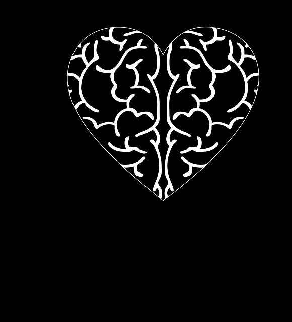 cranium-3244100_640