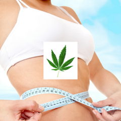 weed for weight loss feature